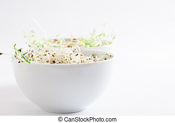 Bowls of Beansprouts - Two white china bowls containing raw...