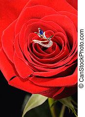 Ring with sapphire in a red rose - Ring in a white rose A...