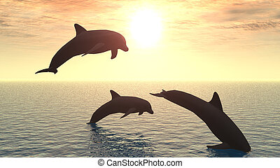 dolphin - Three dolphins floating at ocean (control light)