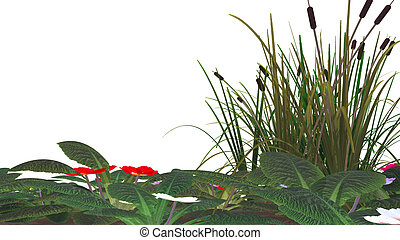 bastón, flores, y, pantano, pasto o césped,...