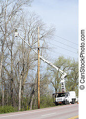 Worker in a lift truck, trimming trees beside power lines -...