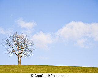 Single tree on hill against stunning vibrant blue sky and clouds