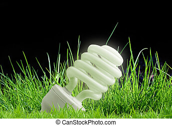 Eco- light bulb