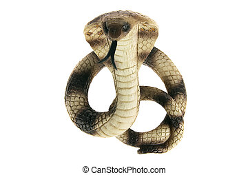 Cobra on White Background