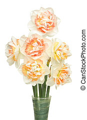 Daffs in vase - Bunch of frilly centered daffodils in a vase