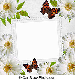 Paper frame and Flowers chamomiles and butterfly