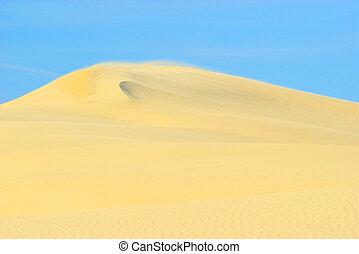 Dune du Pyla 16