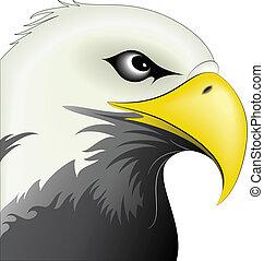 Eagle 1 - Illustration of colored eagle