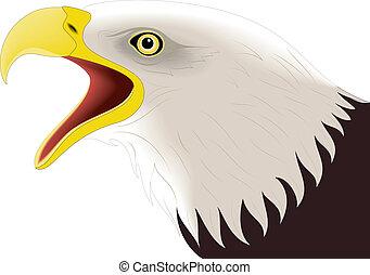 Eagle 2 - illustration of colored eagle