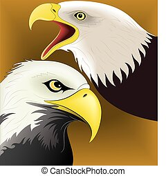 Eagle set vector 1 - illustration vector for eagle set...