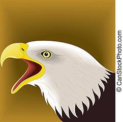 Eagle 07 - illustration vector for eagle set colored