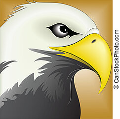 Eagle 06 - illustration vector for eagle set colored