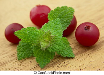 Fresh mint and cranberry