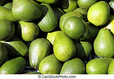 Avocado pears - Avocados pears stacked in a market stall