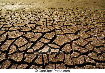 Drought - Cracked mud in the bottom of a river showing...