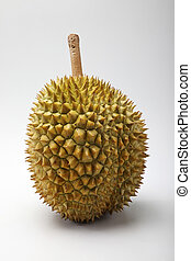 durian - asian fruit or king of the fruit durian