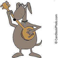 banjo, perro, juego