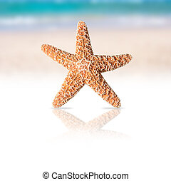 Starfish with beach and sea background