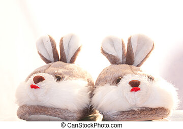 Slippers hare  on a white background