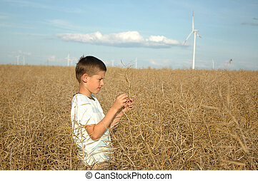child on the field ofwind power stations - young boy on the...