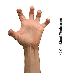 braço
