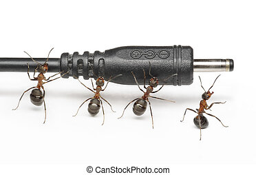team of ants works with mobile phone plug connection,...