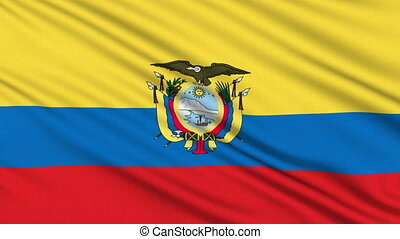 Ecuadorian Flag, with real structure of a fabric