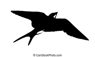 矢量, 黑色半面畫像, 燕子, 白色, 背景