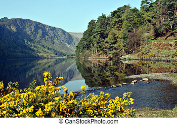 view of the lake in glendalough - beautiful view of the lake...