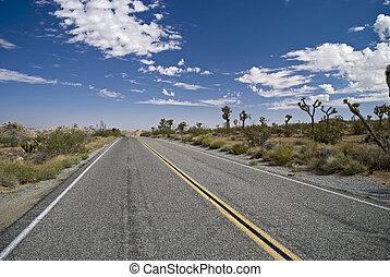 Vanishing Point Roadway - The highway passing through Joshua...