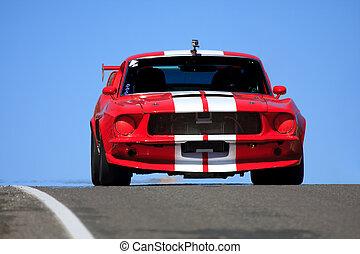 sports car - fast sports car