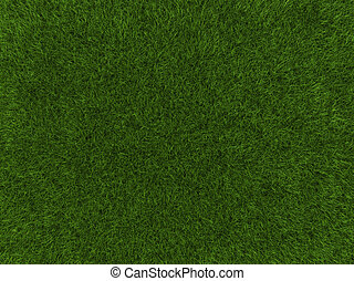 Grass texture - A grass texture of a cultivated land