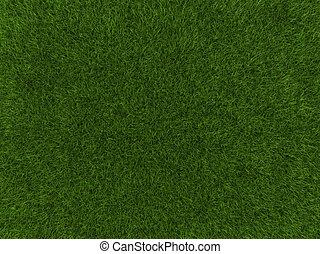 Grass texture - A grass texture of a cultivated land
