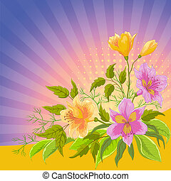 Flower background radiant, alstroemeria