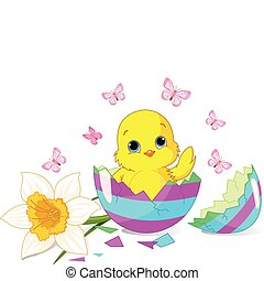 Easter chick surprise - Easter chick sitting in the broken...