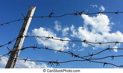 Barb wire 7 - Barbed wire on the blue sky background.