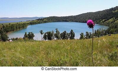 Summer Lake 3
