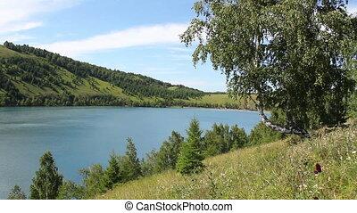 Summer Lake 7 - Lake shore