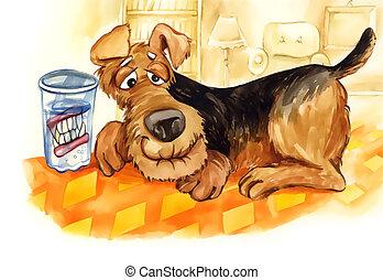Sênior, cão, dentes, dentadura