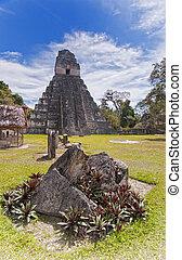 Jaguar Pyramid - Mayan ruins of Tikal in Guatemala