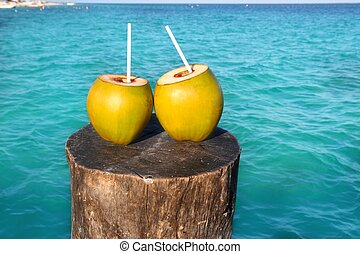 fresh two coconuts juice water straws in caribbean - fresh...