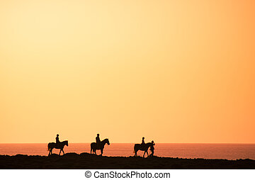 Silhouettes of the horse riders on the coast