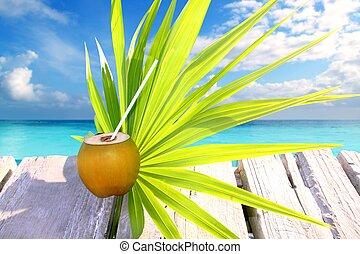coconut fresh in caribbean sea pier chit palm leaf