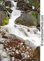 Frothy mountain stream moss