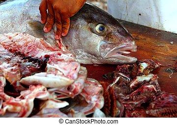 właściciel sklepu rybnego, Przygotowując, amberjack,...