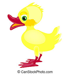Small yellow chicken - Nice yellow chicken on white...