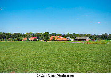 farmhouses - typical dutch farm with barns for the cattle