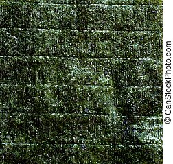 Nori - An image of green leaf of dried nori