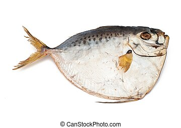 Fish - An image of a salted dry fish