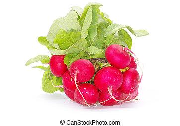 radishes - Fresh radishes on a white background